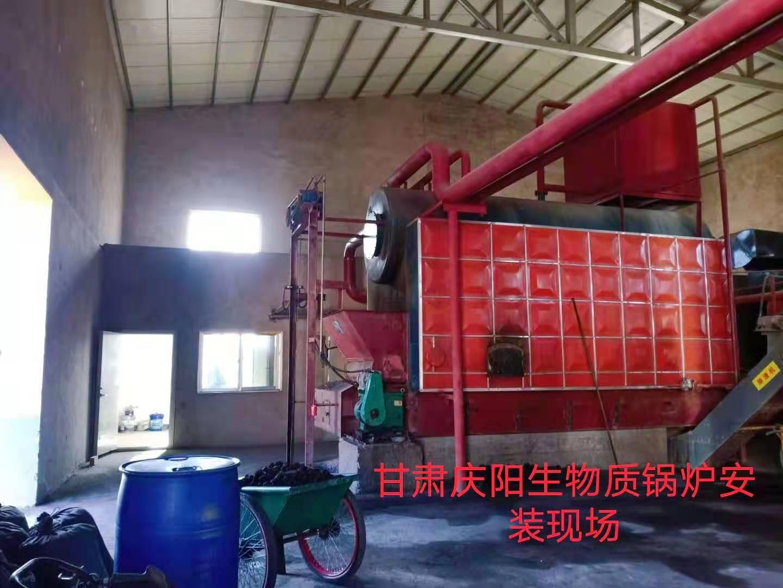 甘肃庆阳生物质锅炉